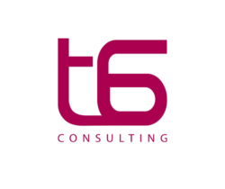 Team 6ix Consulting
